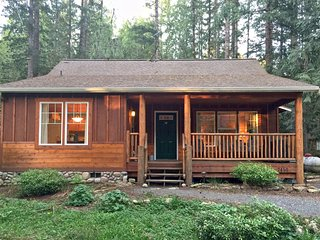 Glacier Springs Family Cabin #95- HOT TUB, FIREPLACE, WIFI*, BBQ, PETS OK, SLP-4
