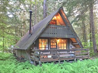 Snowline Cabin #86 A very rustic pet friendly cabin!