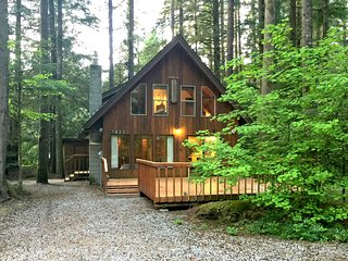35SL Pet Friendly Cabin near Skiing and Hiking at Mt. Baker, Glacier