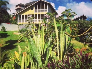 Beautiful 4 Bedroom home overlooking the Caribbean Sea and pool., West Bay