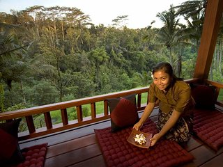 Ethnic & Luxury! 3 BDR Jungle Villa in Ubud!