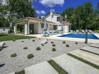 Newly built, modern Villa Stepancic with Pool, surrounded by greenery, Labin