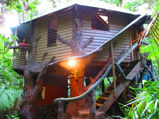 Daintree Jungle Treehouse, Cape Tribulation