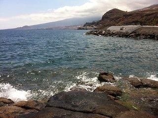 Tenerife balcón al mar - tranquilidad, paz y naturaleza, Tabaiba