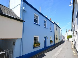 SALSP Cottage in Appledore