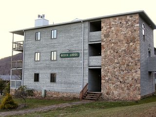 "Beaver Ridge -""Beaver Bungalow"", 1 bedroom condo located in Canaan Valley, Davis"
