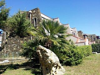 Il Poggio #11144.1, Asinara