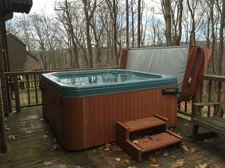 Private Hot Tub, Free Shuttle, and Large Space!