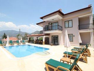 Villa Tia, Yesiluzumlu