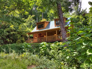 3 BR/ 3 Bath Secluded Cabin known for bears real and carved