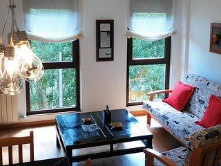 Amplio apartamento en Cofiñal