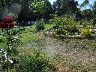 Le jardin avec son bassin
