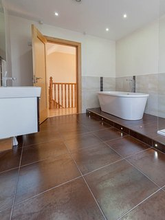 Main bath and shower with mood lighting