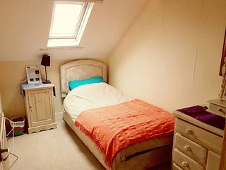 Cozy Single in Tyneside Victorian Terrace Attic, Newcastle