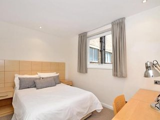 Marylebone 1 bed flat with full park views
