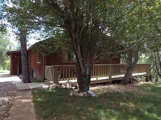 The Brown Cabin: Cozy & freshly renovated, 4 acres, horse corral, large deck!!!