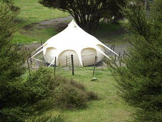 Glamping at Kawakawa Station, Featherston