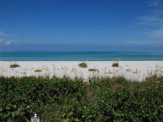 Seagrape Colony 02 ~ RA128502, Boca Grande
