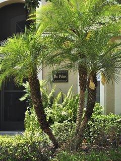 The Palm at Palms Villa!