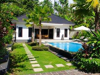 Villa Kupu Kupu ( lovina )