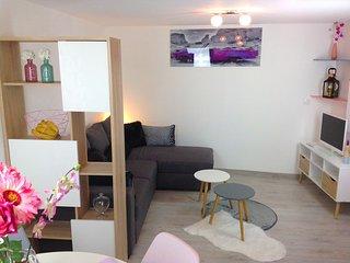 Salon avec le canapé lit eet Tv TNT à l'étage du bas