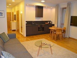 M. K. Ciurlionio street central apartment