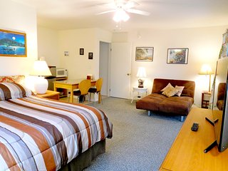 Great Studio, kitchenette, bath, parking,  big lanai, tropical garden, WiFi, TV