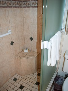 Shower with seat and grab bars