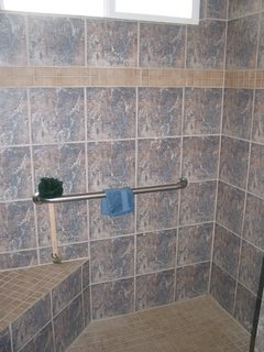 Bathroom #2 with roll in shower, seat and grab bars