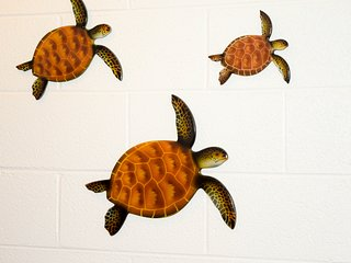 The condo's walls are nicely decorated with local art - including these honu wall decorations