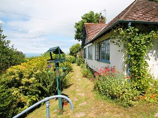Halsecombe Cottage, Porlock - Delightful situation of the edge of Porlock - stunning views