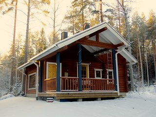 Ski log cabin to rent in Koli