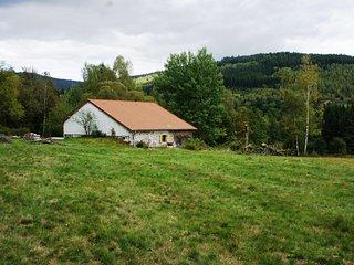 Altes Bauernhaus Aux Feignes