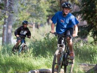 Transport, vélo, vélo de montagne, vélo, végétation