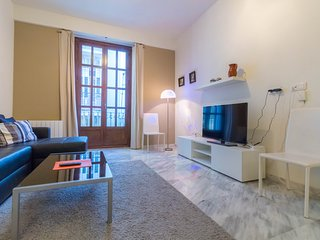 Ricefield apartment, city center, WiFi, AC,, Valencia
