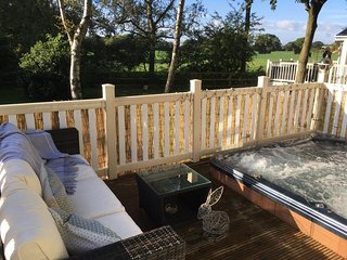 Serendipity Holiday Home with hot tub nr York