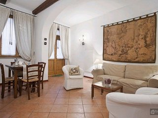 GowithOh - 21131 - Charming and rustic apartment in Santo Spirito - Florence, Florencia