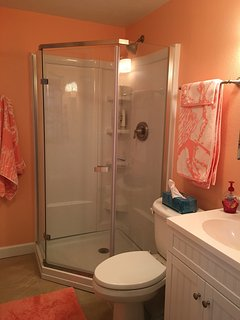 Florida color in master en suite bathroom
