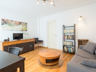 One bedroom apartment in the historic center