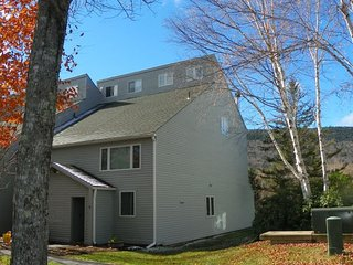 Spacious Pet Friendly Townhouse with views of Mt. Tecumseh!