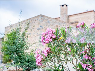 Villa Kalogra - Traditional Stone House with Amazing view