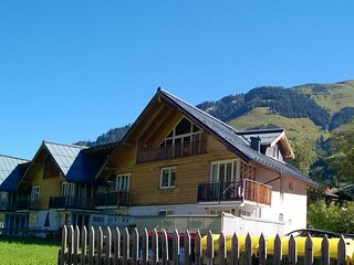 Apartment Marmot Rauris: Skiing/Winter activities, walking, cycling, mountains.