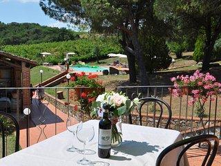 chianti castle near Siena B4, wine estate with swimming pool, wine tasting