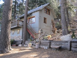 Treetop Hideaway Vintage Honeymoon Charmer Nearby Skiing at Snow Valley, Green Valley Lake