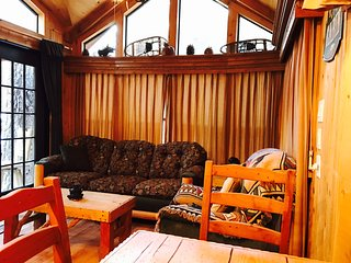 Bear Crossing South lake Tahoe pet friendly cabin, South Lake Tahoe