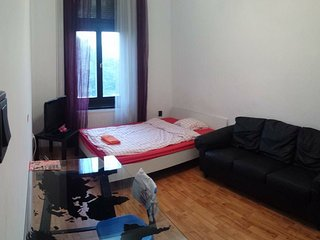 4 bedrooms danube view central flat, Budapest