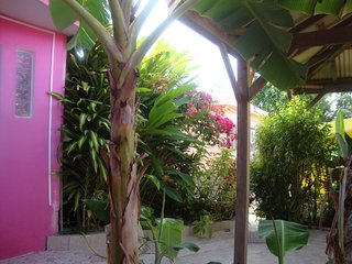 Orchard Bungalow - Self Catering 3 people