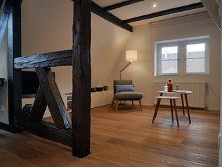 ZUM GUAT LAWA ❤︎ Duplex cosy au ceour de Colmar