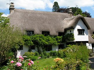 Three Pound Cottage - The Dartmoor Holiday Cottage