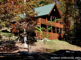 WEARS VALLEY LOG CABIN - CROSS CREEK - 4 BEDROOM - PRIVATE SECLUDED-PET WELCOME